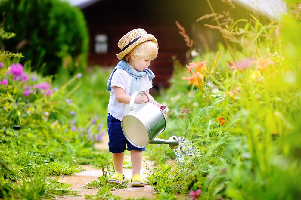 entretien jardin privé